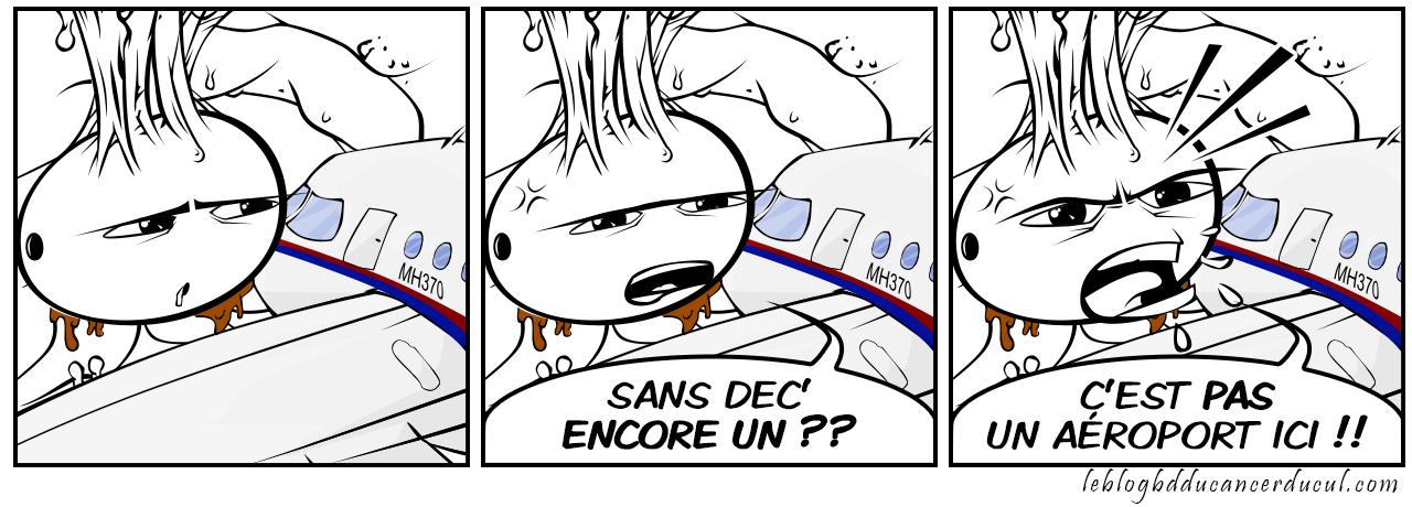MalAssia Airlines